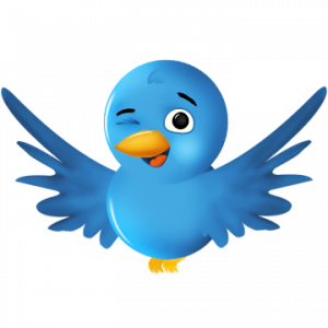 Binnenkort officiële Twitter-applicatie voor Android?