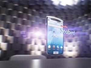 seabird concept