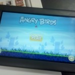 angrybirds-root