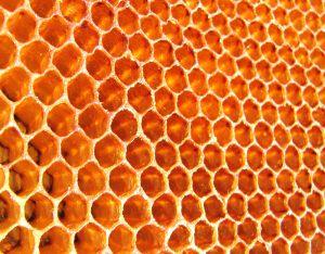 Honeycomb: alleen voor krachtige Android-tablets?