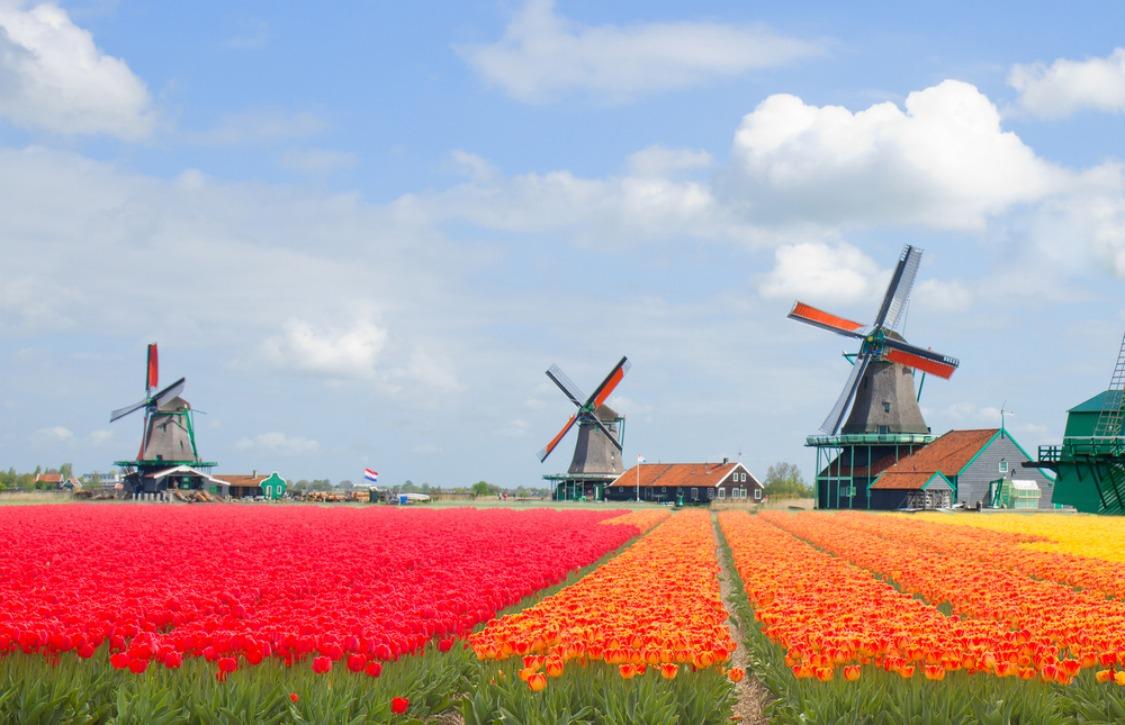 De 39 beste Nederlandse Android-apps