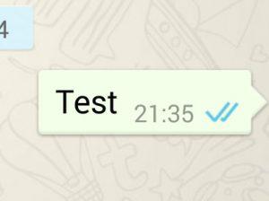 blauwe vinkjes in whatsapp