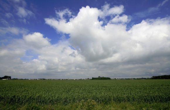 Weer-app Het Weer in Nederland krijgt fris nieuw design