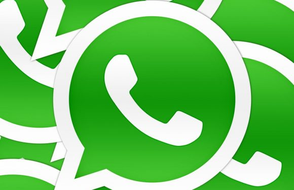 Zo maak je een WhatsApp back-up en zet je hem direct over