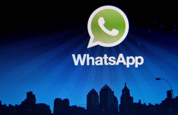 WhatsApp toont blauwe vinkjes bij berichten die zijn gelezen
