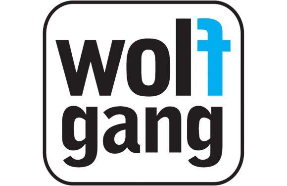 Budgetmerk Wolfgang kan Android-updates niet garanderen
