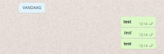 whatsapp web tekst