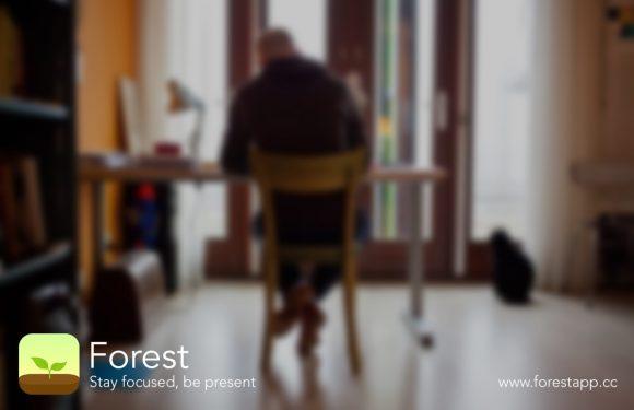 Forest helpt je met geconcentreerd blijven tijdens je werk