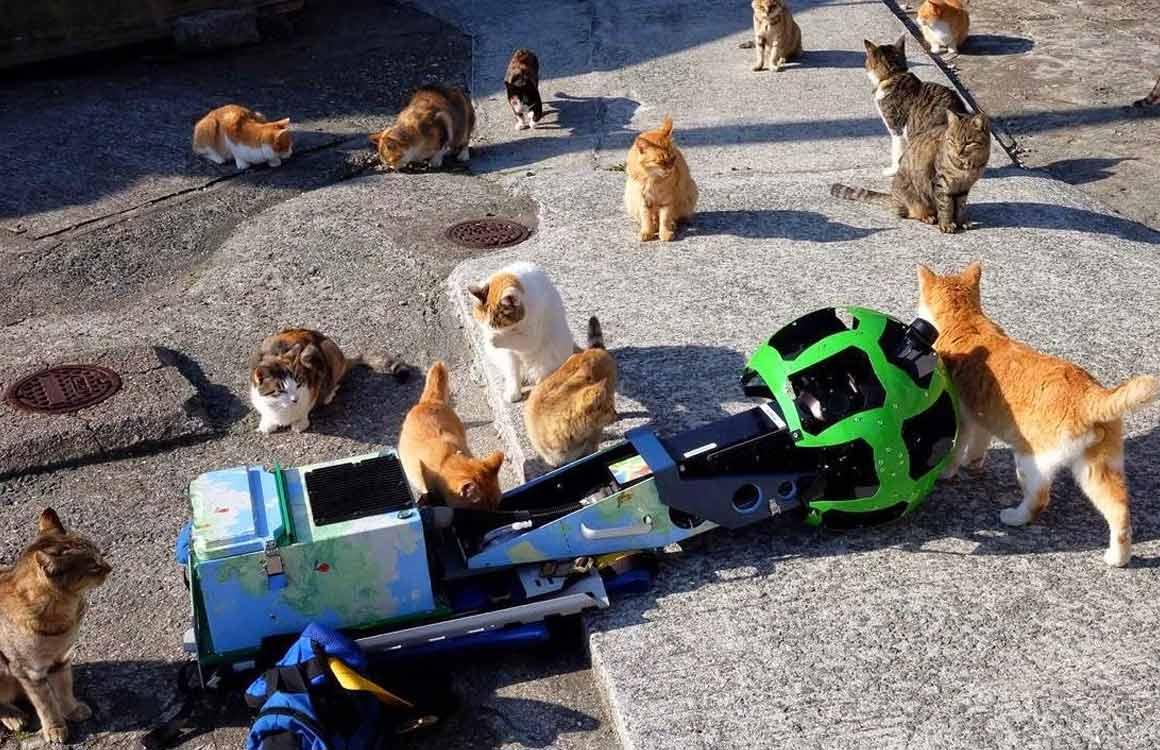 Zo gaan de vernieuwde Google Street View-camera's de wereld indexeren