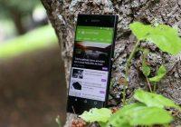 Aandeel Nougat-adoptie stijgt in aanloop naar release Android O