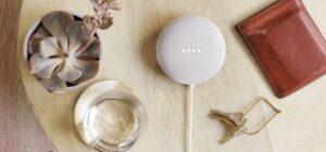 Google Nest Mini komt naar Nederland