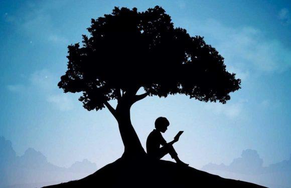 Eindelijk ondersteunt Kindle splitscreen: lees terwijl je wat anders doet