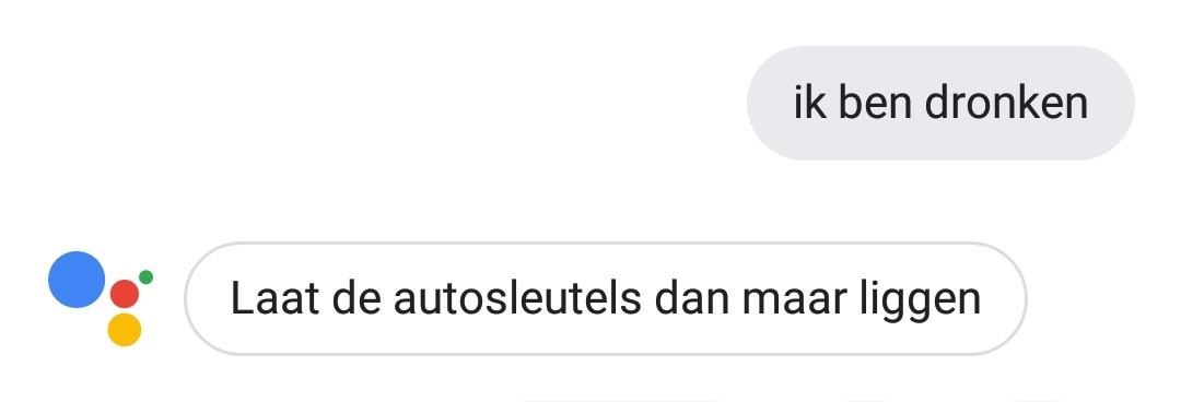 grappige google assistent-antwoorden