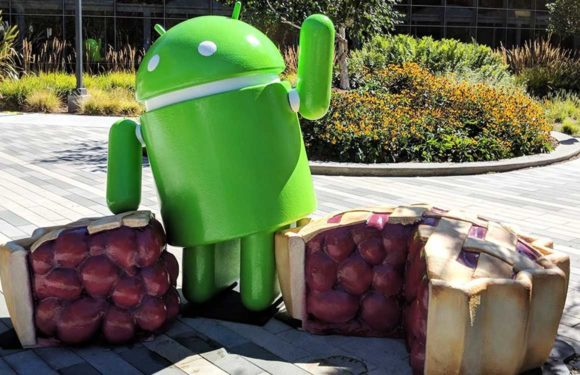 Google onthult het officiële Android Pie-beeld
