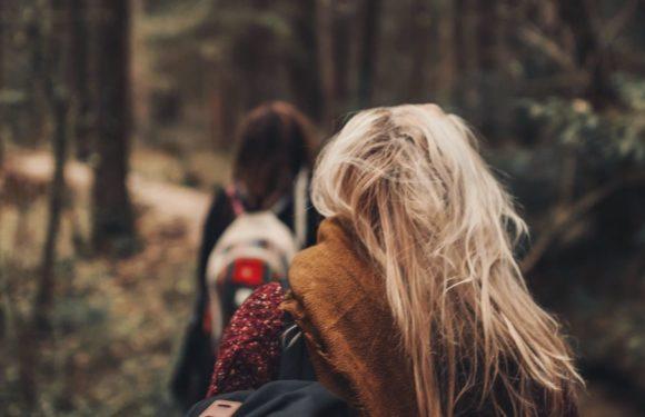 Vind een nieuwe wandelroute in Nederland of België met deze 5 apps