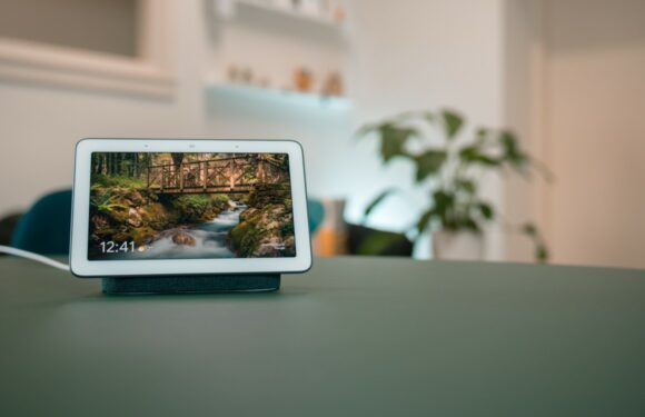 Aanbieding: Google Nest Hub en Home afgeprijsd in Google Store