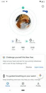 Google Fit-uitdagingen