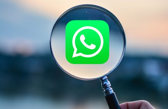 3 tips om je WhatsApp privacy te verbeteren: zo app je anoniemer