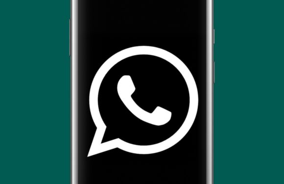whatsapp filmpjes