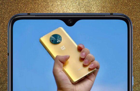 Foto: zo ziet de nooit uitgebrachte OnePlus 7T eruit