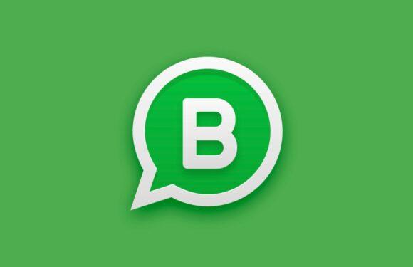Gids: 8 tips om alles uit WhatsApp Business te halen