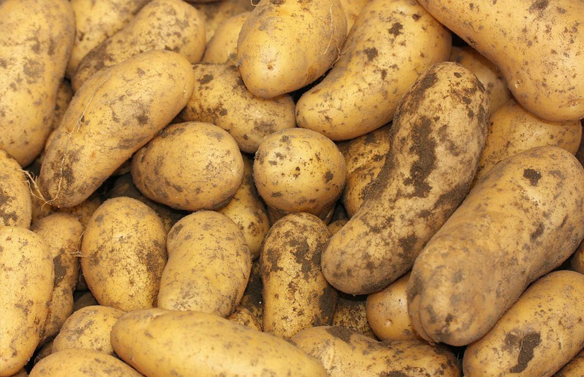 Aardappelen 5 creatieve oplaadmethodes