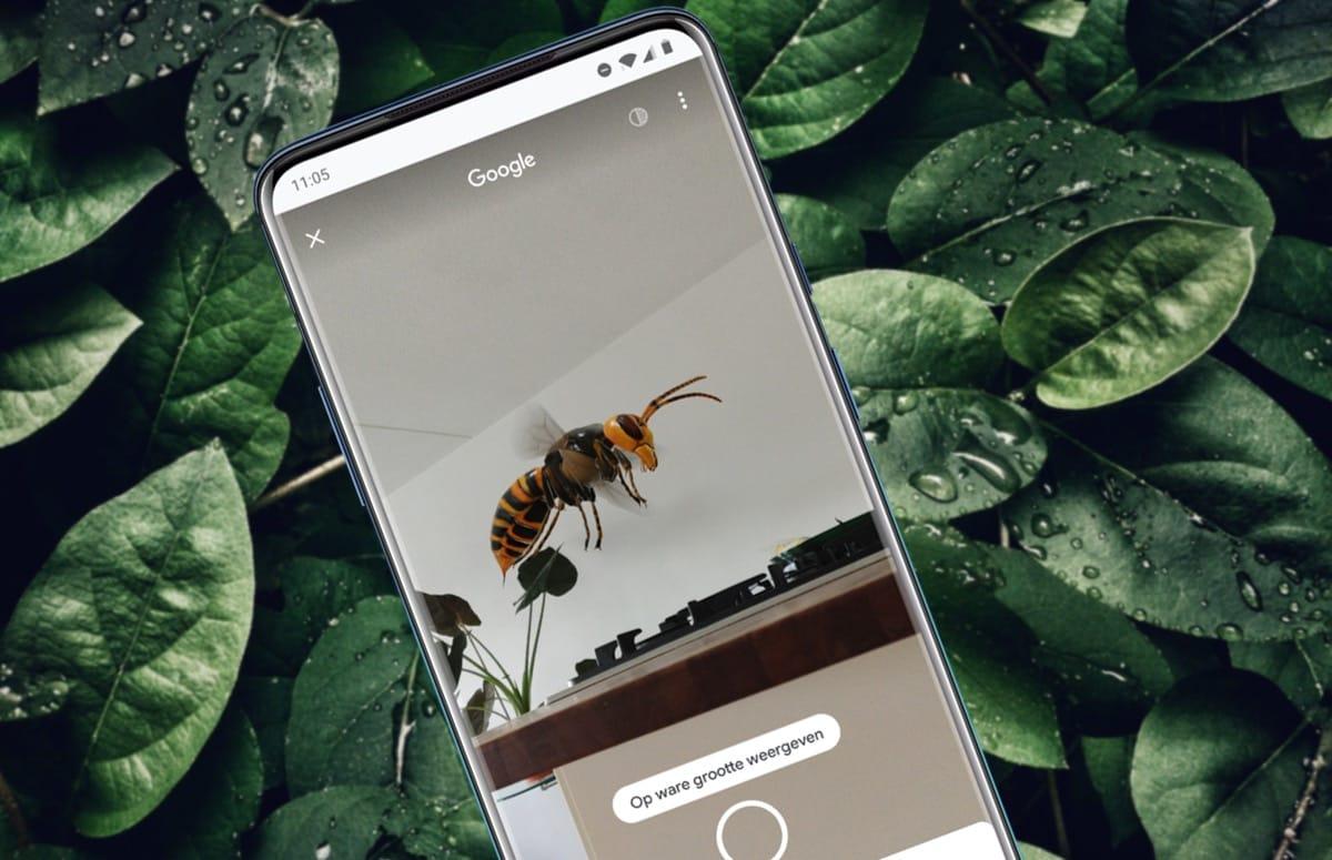 Tip: tover levensgrote insecten in je kamer via Google