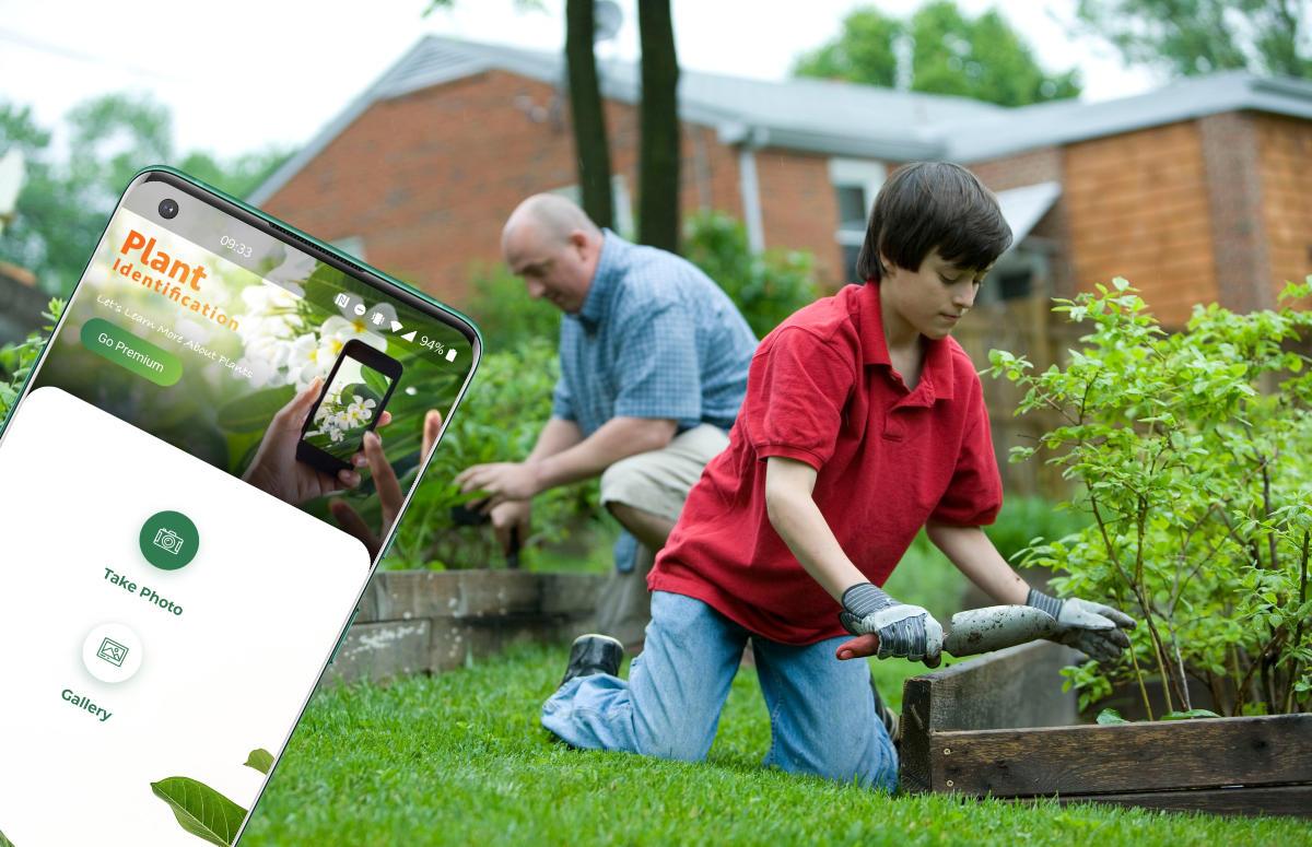 5 tips voor een slimme tuin: mooie planten zonder groene vingers
