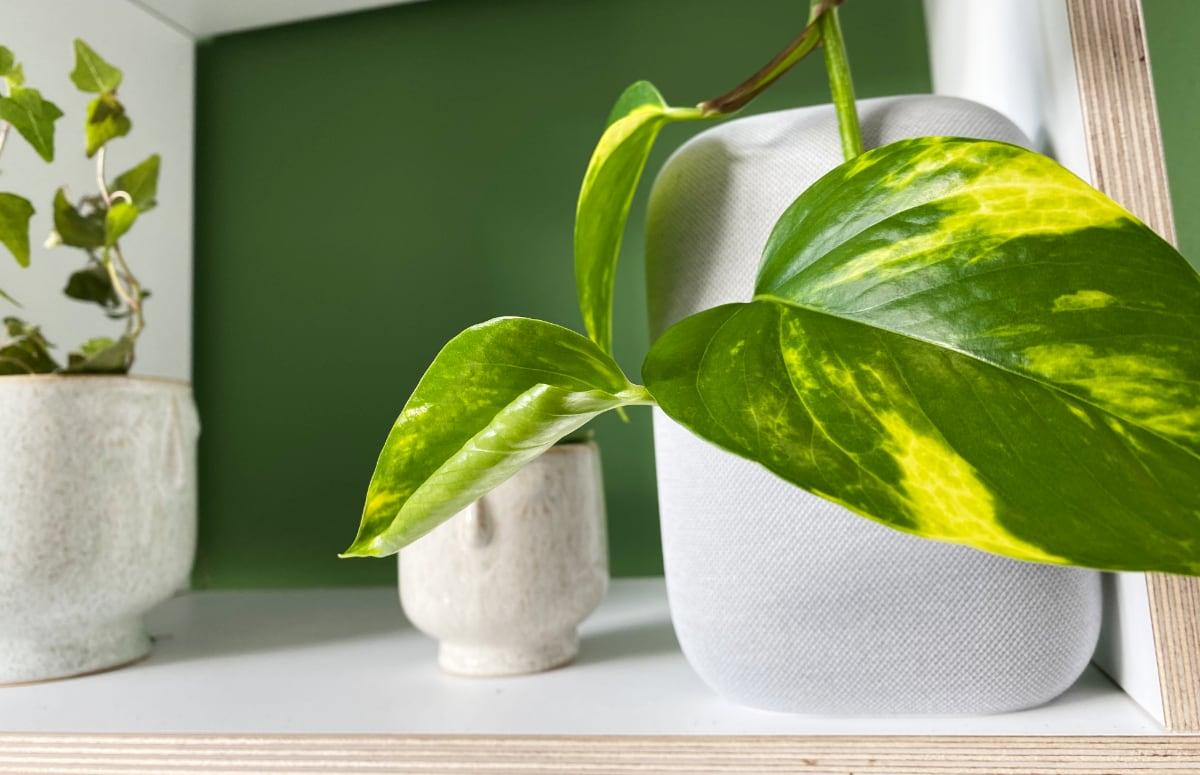 5 tips om je huis onzichtbaar slim te maken