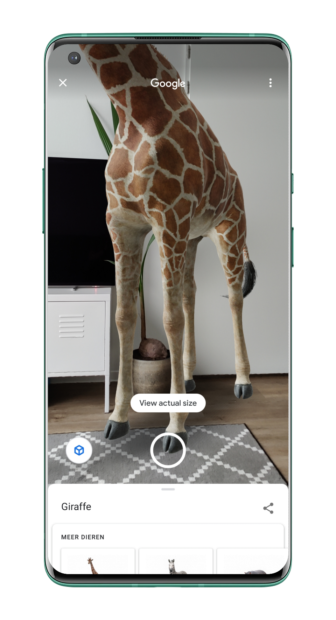 Google AR-dieren