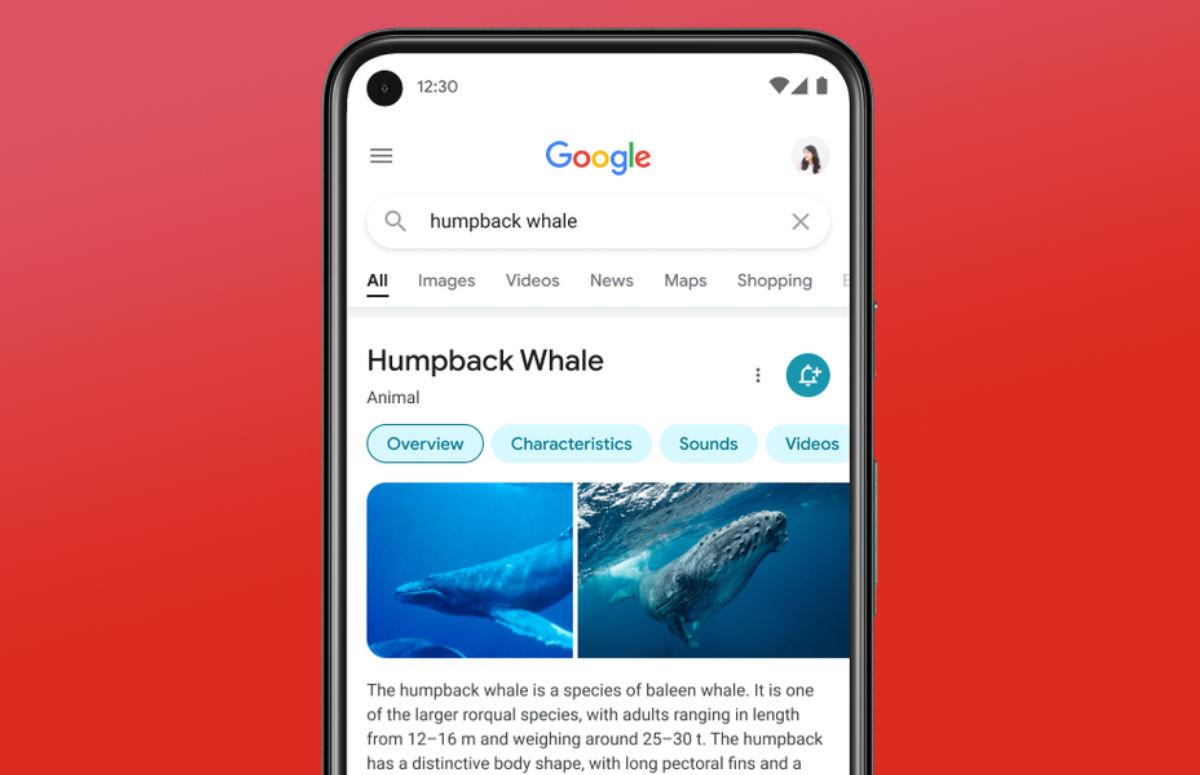 Google Zoeken krijgt redesign: dit is het nieuwe ontwerp