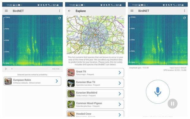 beste Android-apps BirdNET