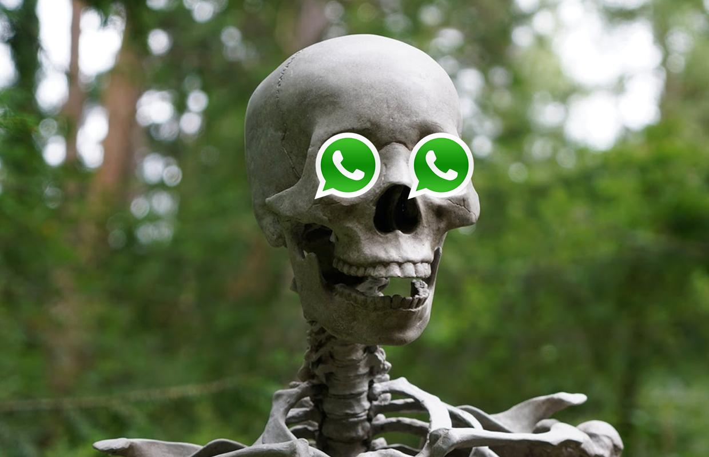 WhatsApp blokkeert gebruikers die nieuwe voorwaarden niet accepteren (nog) niet